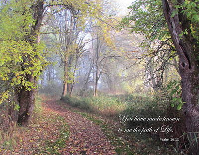 Photograph - Path Of Life by Angie Vogel
