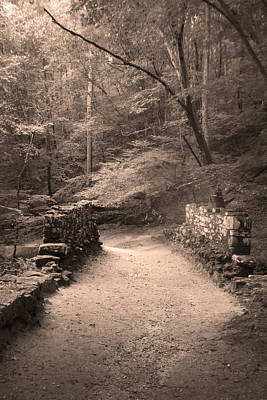 Photograph - Path Over Historic Poinsett Bridge  by Kelly Hazel