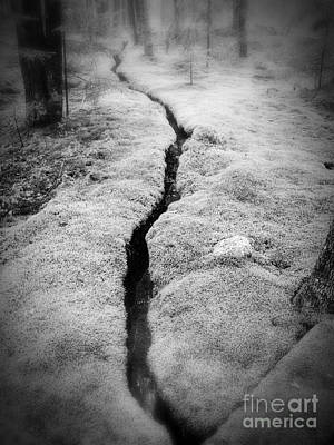 Photograph - Path Taken by Edward Fielding