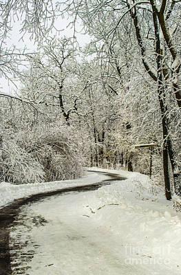 Photograph - Path Through Nemo Snow by Deborah Smolinske