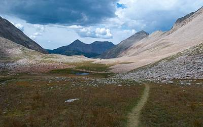 Photograph - Path Through The Alpine by Cascade Colors