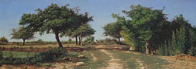 Path Through The Apples Trees Art Print