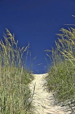 Photograph - Path Through The Dunes by Allen Beatty