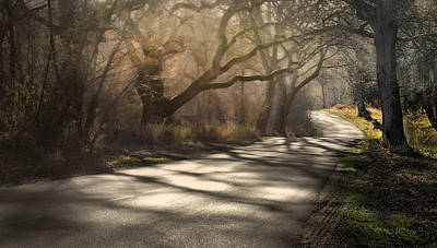 Photograph - Path Through The Fairy Tales Forest by Henrik Petersen