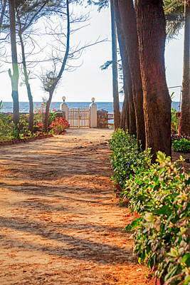 Photograph - Path To Beach by Kantilal Patel