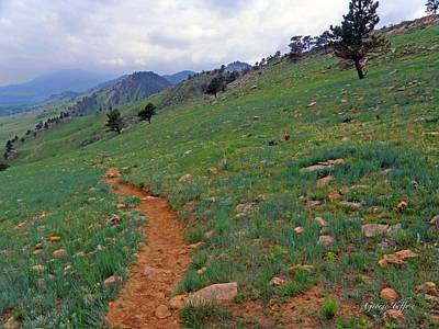 Photograph - Path To Boulder by George Tuffy
