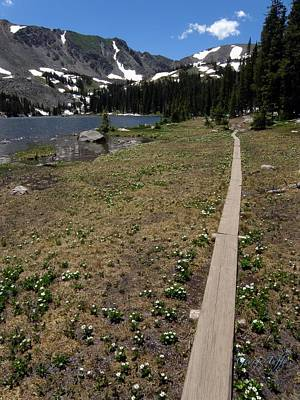 Photograph - Path To Diamond Lake by George Tuffy