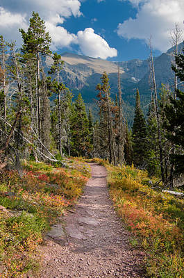 Photograph - Path To Glacier Splendor by Greg Nyquist