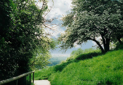Photograph - Path To Glastonbury Tor by Marilyn Wilson