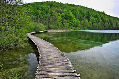 Reflection Photograph - Path To... by Ivan Slosar