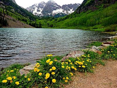 Photograph - Path To Maroon Bells Colorado by George Tuffy