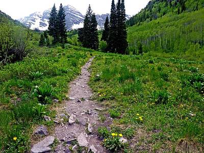Photograph - Path To Maroon Bells by George Tuffy