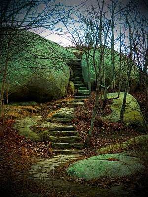 Photograph - Path To Munchkinville by Marcia Lee Jones