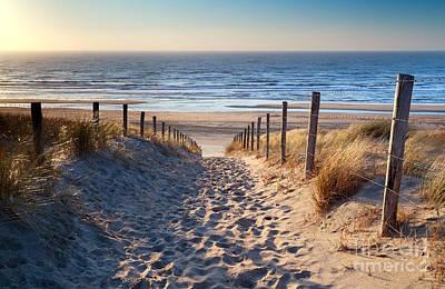 Zandvoort Photograph - path to North sea beach in gold sunshine by Olha Rohulya