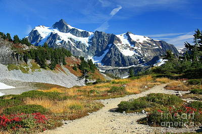 Photograph - Path To Shuksan by Frank Townsley