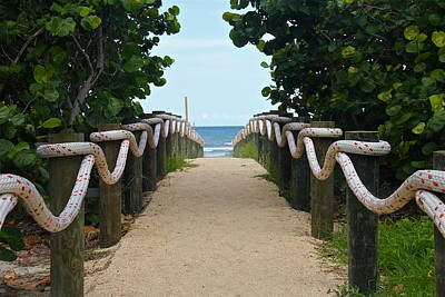Photograph - Path To The Beach by Denise Mazzocco