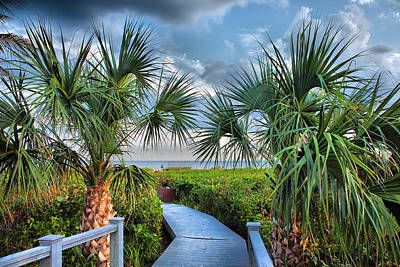 Path To The Beach I Art Print by Steven Ainsworth