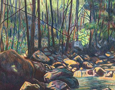 Drawing - Path To The Cascades In Giles County by Kendall Kessler
