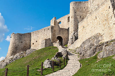 Photograph - Path To The Castle by Les Palenik