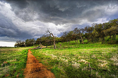 Path To The Clouds Art Print