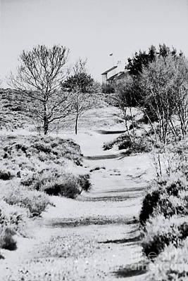 Coastguard Cottages Photograph - Path To The Coastguard Cottages by Darren Burroughs