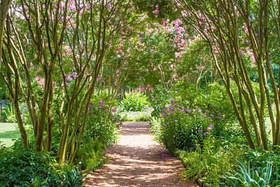 Path To The Garden Art Print