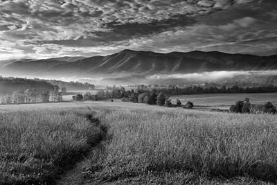 Tennessee Photograph - Path To The Mountains by Andrew Soundarajan