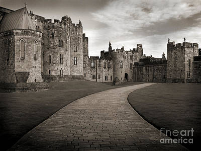 Photograph - Path To The Past by Barry Lamont