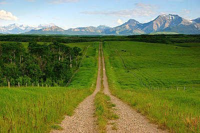 Photograph - Path To The Rockies by Daniel Woodrum