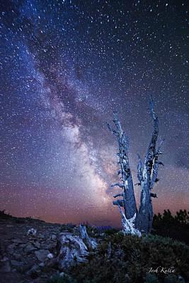 D700 Photograph - Path To The Stars by Josh Kulla