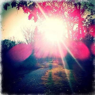 Pathway Photograph - Path To The Sun by Stefanie Roberts