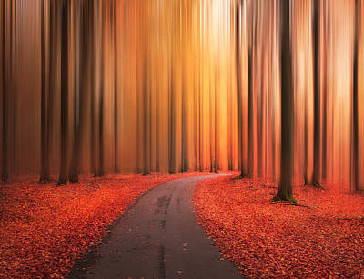 Photograph - Path To Unknown by Christian Lindsten