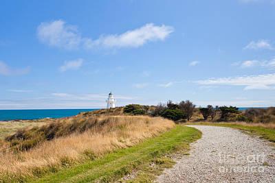 Path To Waipapa Point Lighthouse The Catlins Of Nz Art Print by Stephan Pietzko