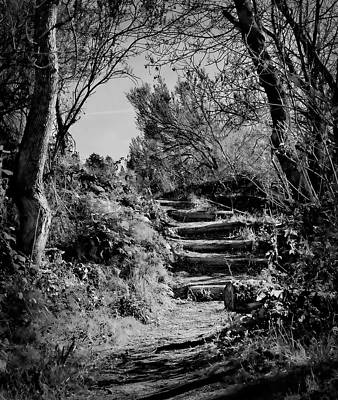 Photograph - Path With Steps by Robert Woodward