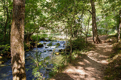 Pathway Along The Springs Art Print by John M Bailey
