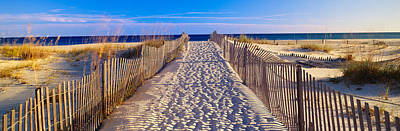 Pathway And Sea Oats On Beach At Santa Art Print by Panoramic Images