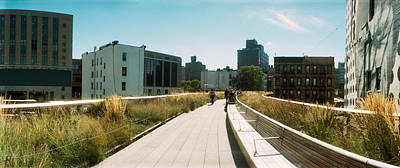 Pathway, High Line, Chelsea, Manhattan Art Print