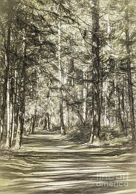 Photograph - Pathway by Jean OKeeffe Macro Abundance Art