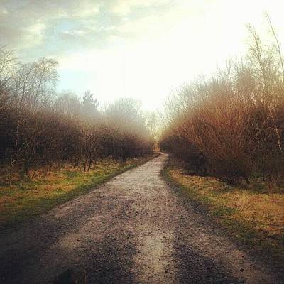 Pathway Photograph - Pathway by Michael Henderson