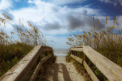 Photograph - Pathway To Paradise by Francis Trudeau