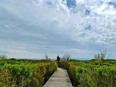 Photograph - Pathway To The Beach by Jean Wright