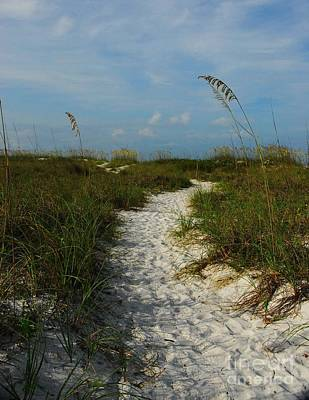 Pathway To The Sea Print by Mel Steinhauer