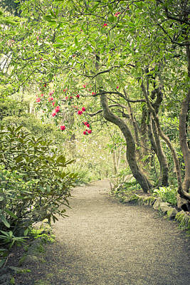 Photograph - Pathway To The Secret Garden by Priya Ghose