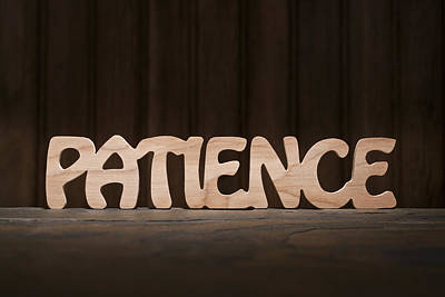 Positive Attitude Photograph - Patience by Donald  Erickson