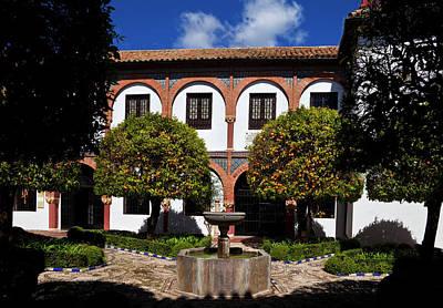 Cordoba Photograph - Patio Del Museo Cordobes De Bellas by Panoramic Images