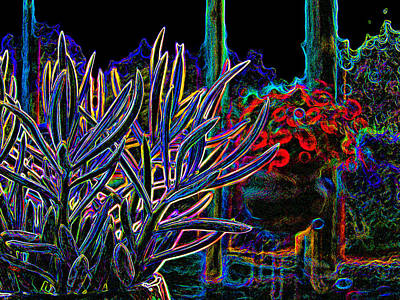 Color On Black Digital Art - Patio Plants by James Granberry