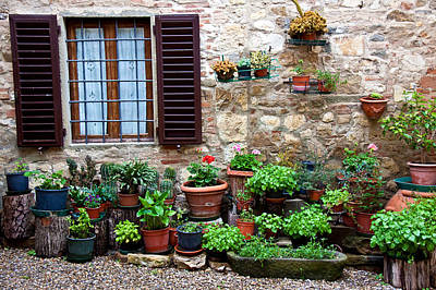 Photograph - Plants On Mediterranean Patio by Jennifer Lycke