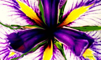 Patricia Bunk's Iris  Original