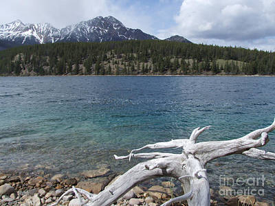 Art Print featuring the photograph Patricia Lake - Jasper by Phil Banks