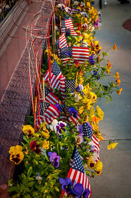 Photograph - Patriotic Pansies by Gene Sherrill